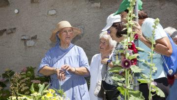 Schwester Beatrice erklärt, dass viele Pflanzen kleine Könner sind: die Fette Henne enhält Aloe und die dünne Blattaussenhülle kann als Pflaster dienen. | © Roger Wehrli