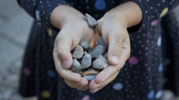 Besonders für die Kinder ist es wichtig, die Natur mit eigenen Händen zu begreifen und zu spüren. | © Roger Wehrli