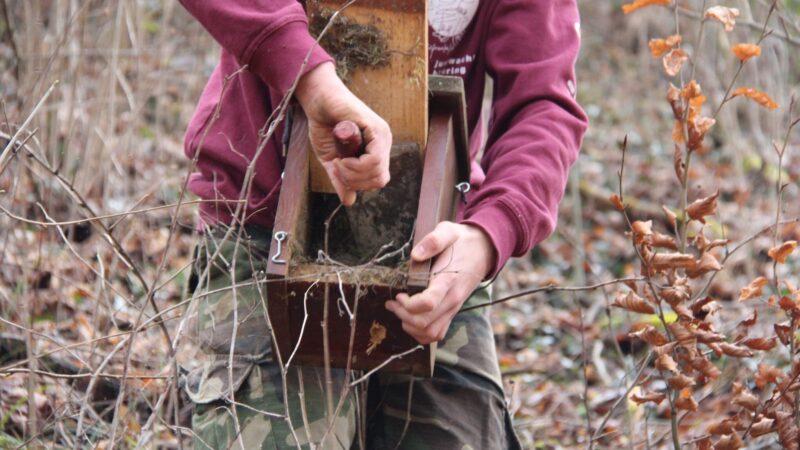 Unter dem Motto «Wittnau lebt!» hat die Jubla Wittnau diverse Projekte verwirklicht. Am Samstagnachmittag reinigten die Kinder und Jugendlichen zusammen mit dem Natur- und Vogelschutzverein die Nistkästen im Wald. | © zvg