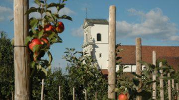 1648 kamen Benediktiner nach Mariastein und erbauten dort das noch heute existierende Kloster. Bereits 1442 ist die Legende vom geretteten Kind durch Maria an jener Stelle bezeugt. Es pilgerten also schon 200 Jahre vor der Errichtung des Klosters Menschen zu den Grotten von Mariastein. | © Pia Zeugin