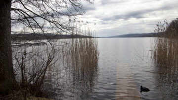 Dank der beiden Gewässer Erusbach und Hallwilersee hat der Pastoralraum seinen heutigen Namen erhalten.  | © Roger Wehrli