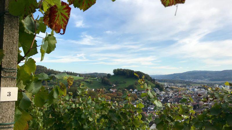 In den farbig-milden Oktobertagen der vergangenen Woche wurden die letzten Trauben gelesen. Die Ernte ist eingebracht und hat nach dem turbulenten Weinjahr Zeit zu reifen. Auch in den Aargauer Weinkellern gedeihen exzellente Tropfen und einige der lokalen Weine schaffen es vom Keller in den Kelch. Doch das ist gegen die Regeln. Die Aargauer Winzer wollen das nun ändern. | © Marie-Christine Andres