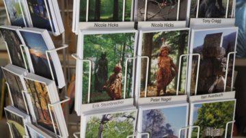 In der Bibliothek zeigen Fotokarten die gen 35 Skulpturen des Skulpturenparks. Als Lektüre gibt es viel über Kunst. Im Sommer können Wanderer am Freitag, Samstag und Sonntag gegen einen kleinen Beitrag, eine Erfrischung und ein Stück Kuchen dort geniessen. | © Anne Burgmer