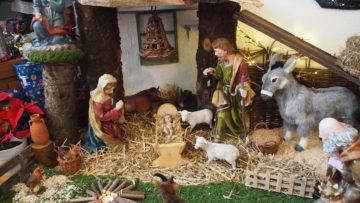 Seit Jahren schon haben die Markajs bei sich zuhause zur Adventszeit eine Krippe aufgestellt. Dann darf kommen wer will, um die diese zu bestaunen.  © Andreas C. Müller
