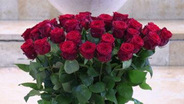 Diese Rosen wurden nach der Messe zu den Müttern in der Pfarrei St. Nikolaus, Erlinsbach, gebracht. | © Christian Breitschmid