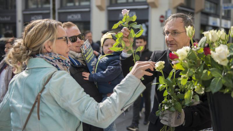 Rosen zu kaufen gibt es im Aargau unter anderem in Schöftland, Frick, Laufenburg, Würenlingen, Unterendingen, Oberrohrdorf, Mellingen, Zufikon oder Sins. | © Fastenopfer