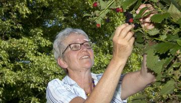 Vroni Peterhans ist Katechetin, Bäuerin und Präsidentin des Vereins oeku Kirche und Umwelt. | © Roger Wehrli