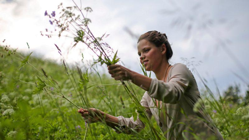Viele Bräuche sind mit dem Johannistag verbunden, der besonders in Skandinavien aber auch im Baltikum gefeiert wird. Beliebt sind selbst gemachte Kränze aus allen möglichen Feldblumen, die junge Frauen frisch pflücken. In Litauen brennen jährlich in der Nacht vom 23. Juni bis 24. Juni Johannisfeuer, die Gewitter, Hagelschlag und Viehsterben vertreiben sollen. | © kna-bild
