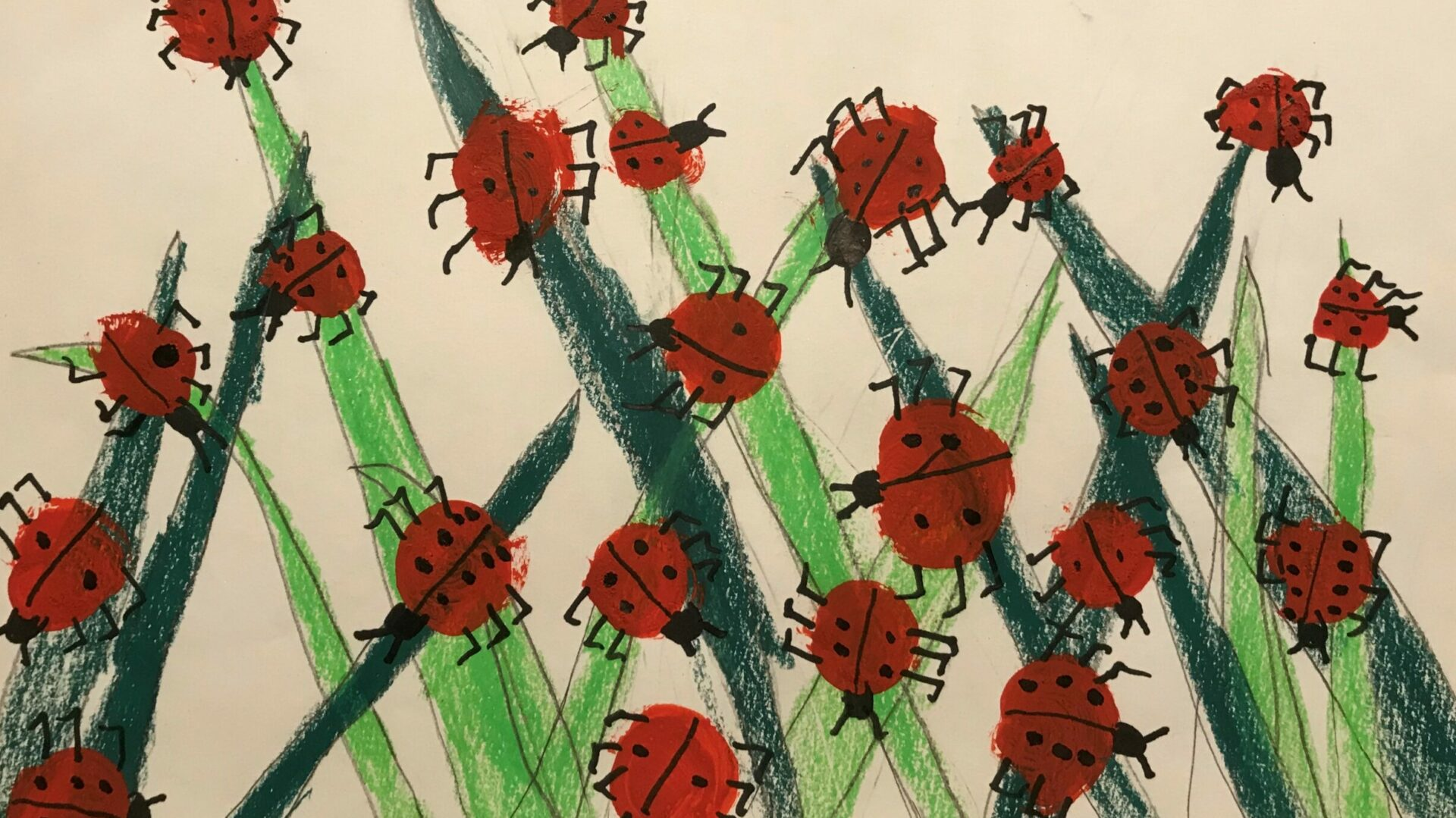 Die Glückskäfer von Eleni Schürch, 9 Jahre, sollen im Alterszentrums St. Bernhard in Wettingen Freude verbreiten.   © Marie-Christine Andres