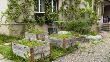 Kleine Gärten im Grossen. Das Geländer wird auf vielfältige Weise genutzt. | © Werner Rolli
