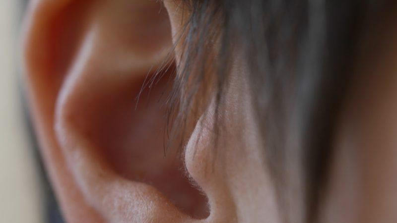 «Ein Ohr für die Schöpfung», so lautet der Titel der Schöpfungszeit 2016. Im Jubiläumsjahr von «oeku - umwelt und kirche» beginnt eine neue Reihe zu den fünf Sinnen. | © Anne Burgmer